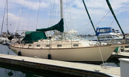 Island Packet Sloop Charter In Oxnard