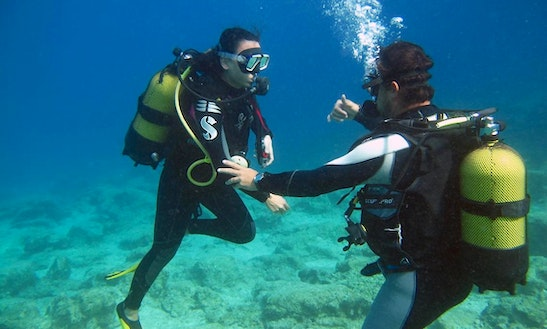 Diving Tours And Courses In Antalya