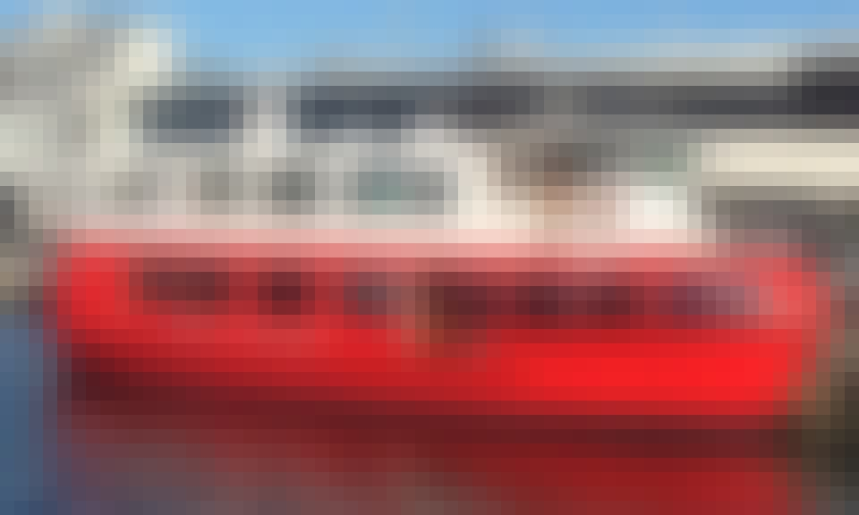 River Cruise in Hobart