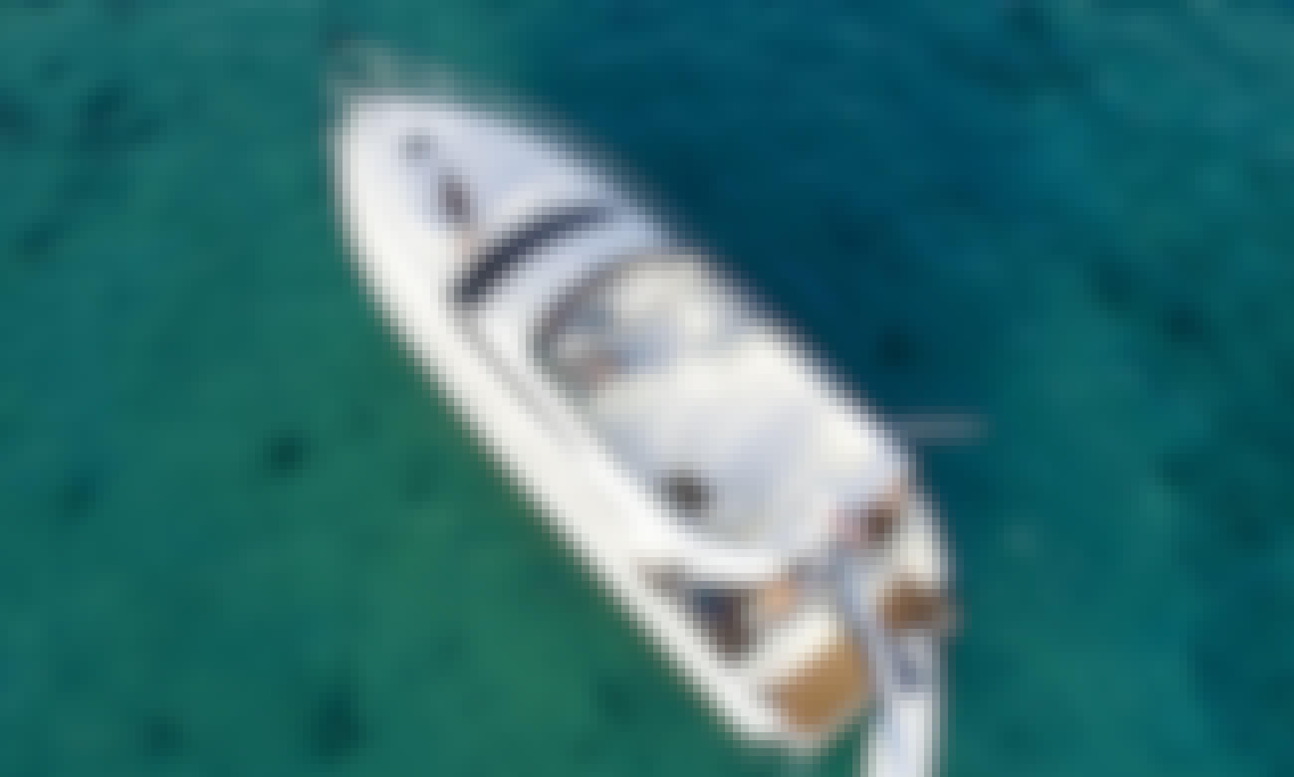 47' Azimut All Inclusive Charter - Playa del Carmen