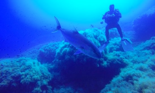 Diving Courses In Pietra