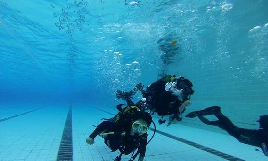Diving Trips And Courses In Santa Cruz De Tenerife