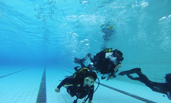 Diving Trips And Courses In Santa Cruz De Tenerife