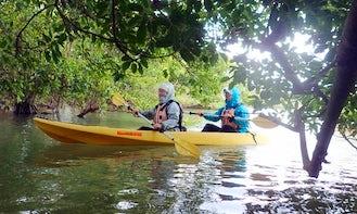 Kayak Tour in Onna-son