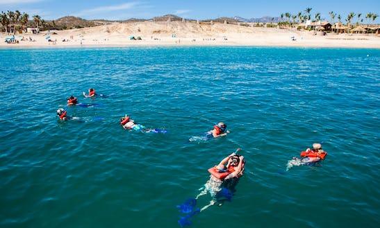 Cabo Escape Snorkel Fun