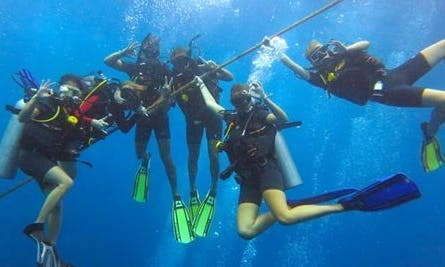 Diving Tours in Tambon Ko Tao