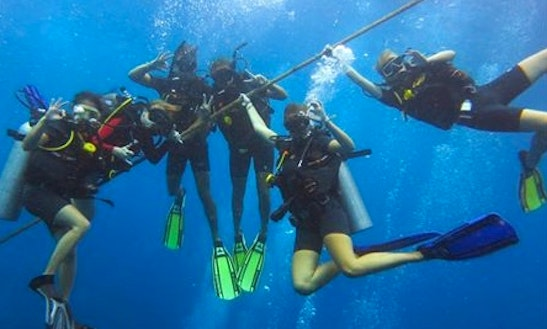 Diving Tours In Tambon Ko Tao