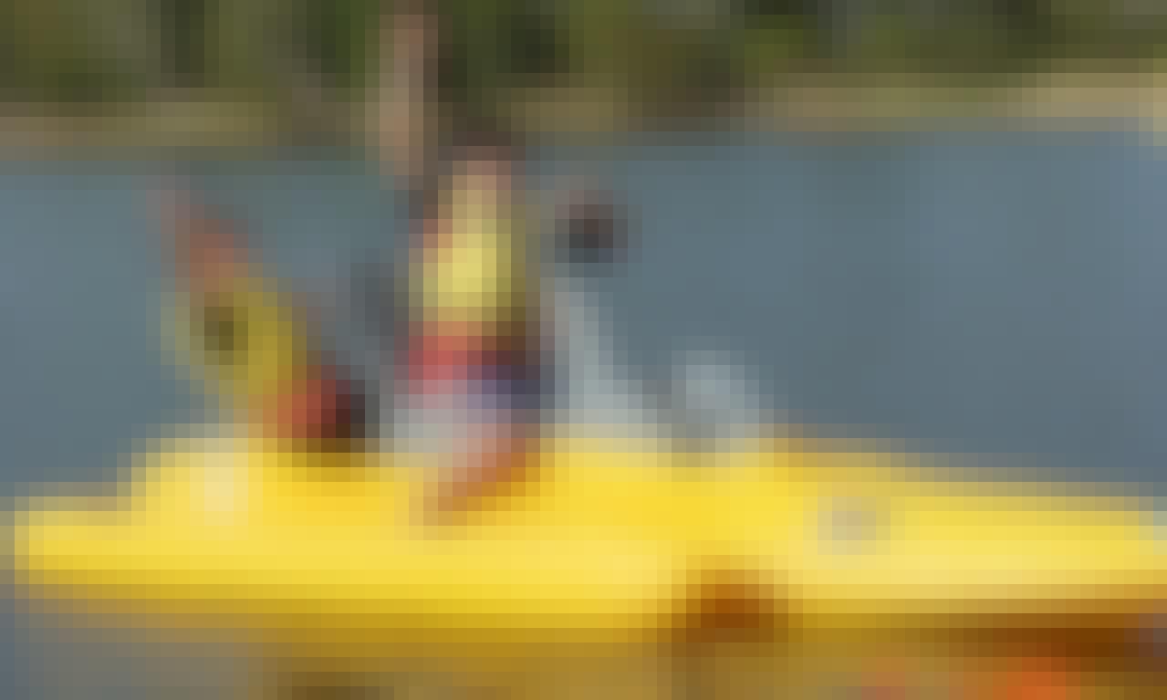 Paddle Boat in Avoca Beach
