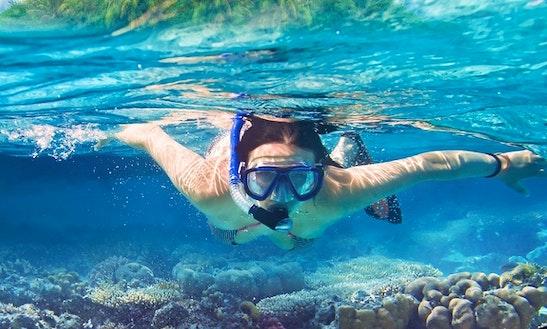 Snorkeling Tour In Mirissa