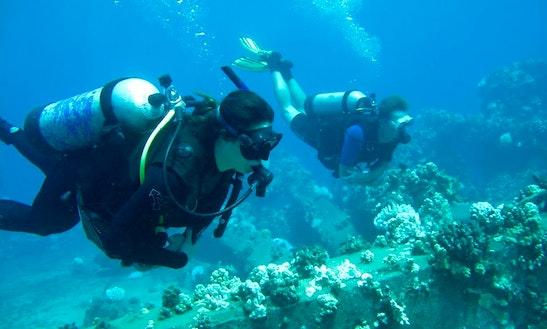 Scuba Dive Lahaina, Hawaii