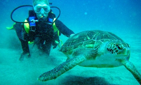Diving Courses In Monte Argentario