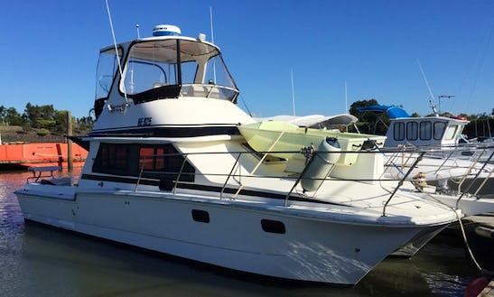Enjoy 36' Power Catamaran Charter In Hastings, Victoria