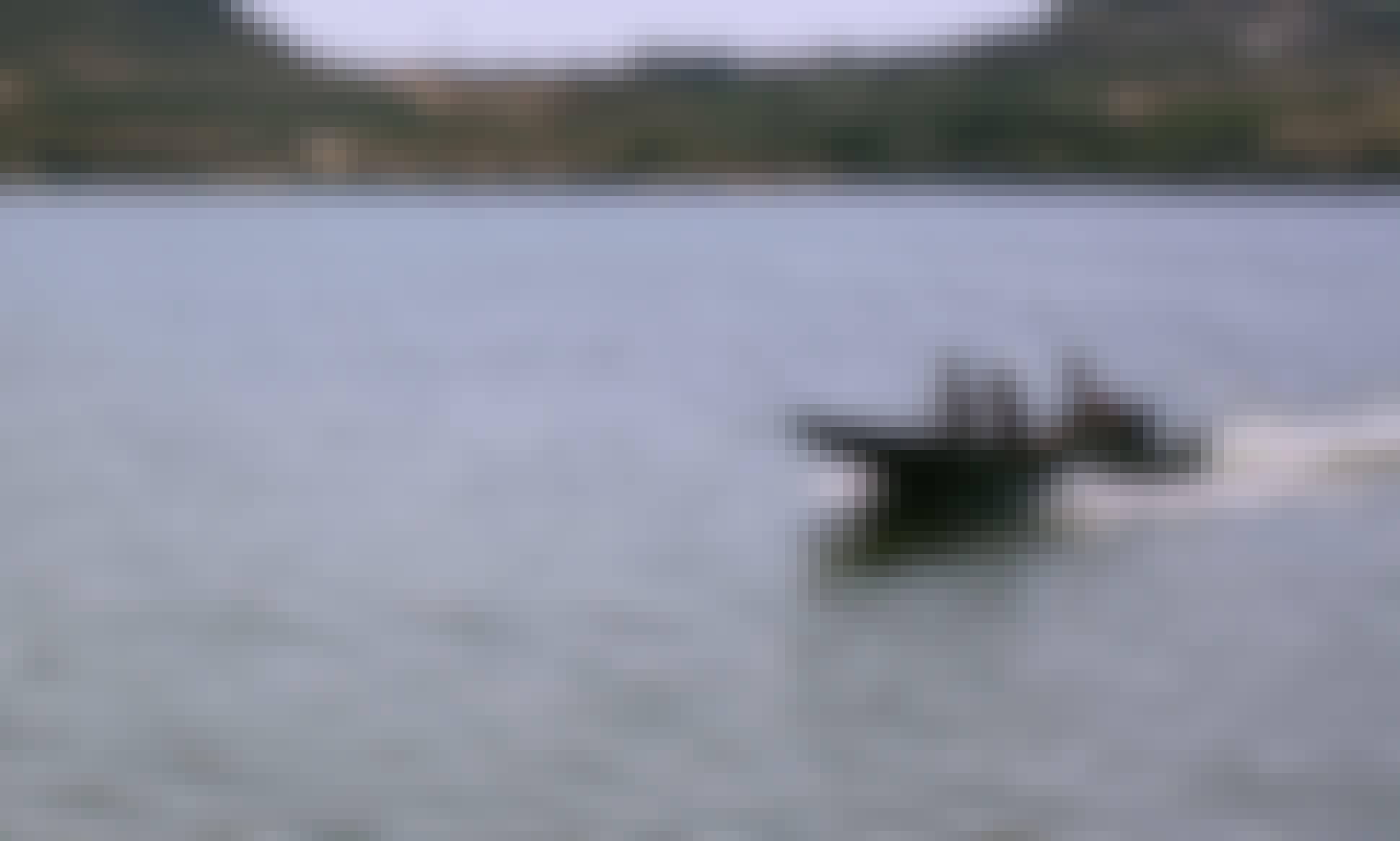 Fishing Charter in Chiprana / Caspe