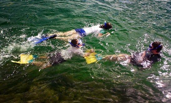 Snorkeling Adventures In Dunwich, Queensland
