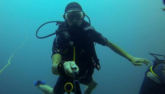 Diving Trips In Mombasa