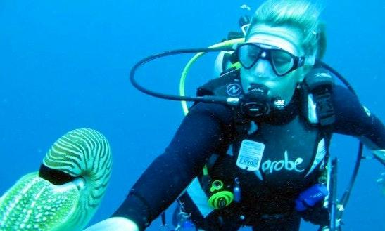 Diving Trips In Matraville