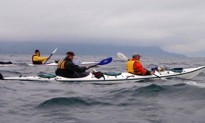 Kayak Trips in Port Coquitlam, Canada