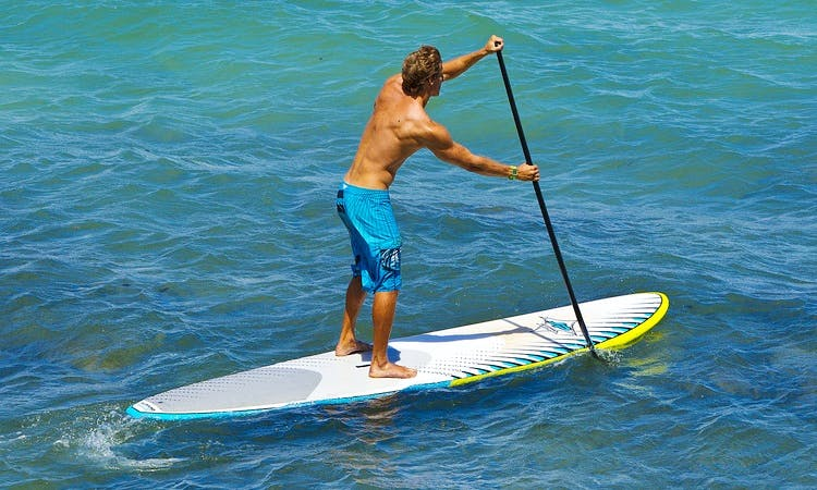 Stand Up Paddleboard Lesons in Shoalwater
