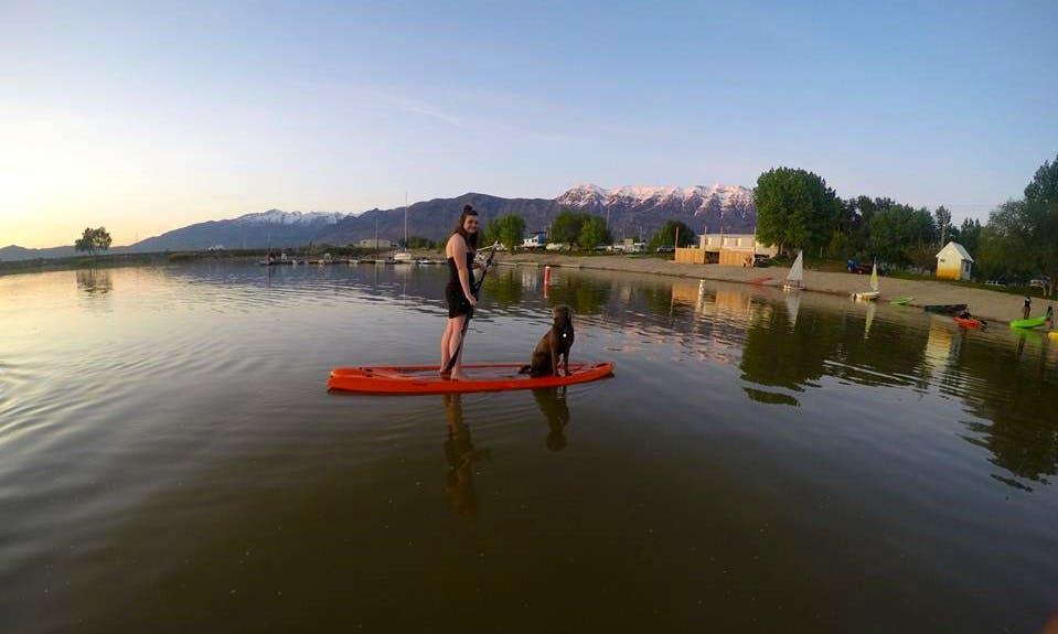 Paddleboard Rental in Vineyard, Utah