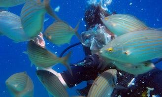 Scuba Diving in Rodos