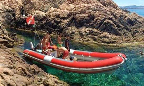 Diving Trips In Costa Paradiso