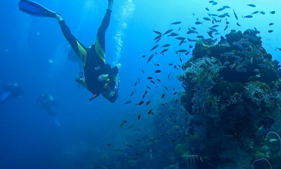 Diving Center In Hurghada