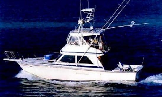 Enjoy Fishing In Islamorada, Florida By 44ft