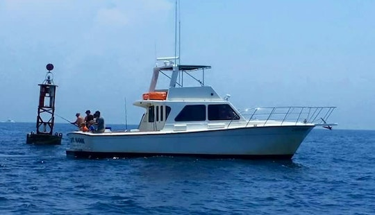Fishing Charters From Panama City With Captain Hank