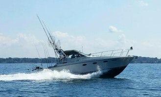 "33' Trojan International Fishing Charter ""U-Betcha"" in Albion"