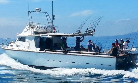 Enjoy 42' Sport Fisherman Charter Fishing In Sorrento, Victoria