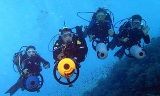 Enjoy Diving Courses and Trips in South Sinai Governorate, Egypt