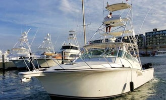 Fishing Charter on 40' Cabo Express Sports Fishing Boat in Cabo San Lucas!