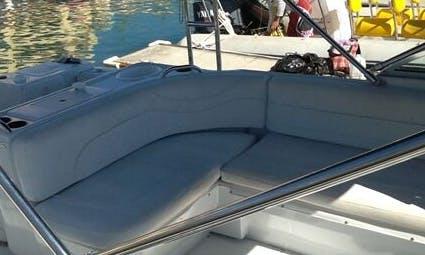 20' Power Catamaran
