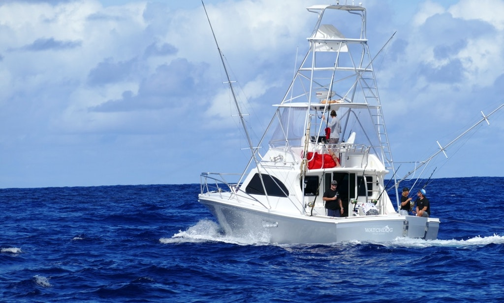 Watchdog fishing charters gold coast luxury charter boat for Gold coast fishing charters
