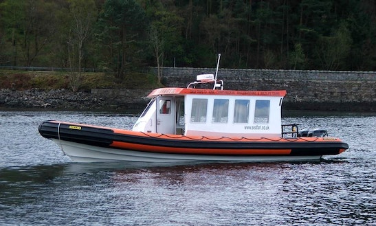 Wildlife And Nature Tour Of The Gulf In Oban, Scotland On This Rib