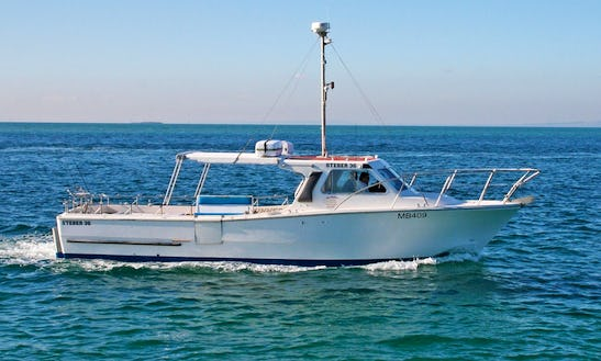 Snapper And Reef Fishing Charters In Sorrento, Victoria