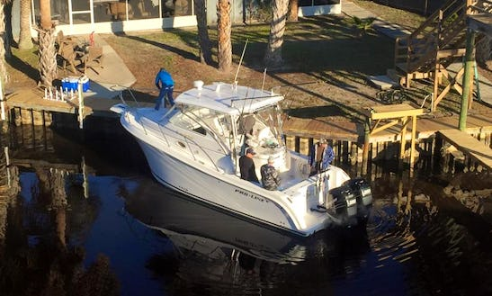 Offshore Fishing Charter On 29ft Proline Boat With Captain Sean