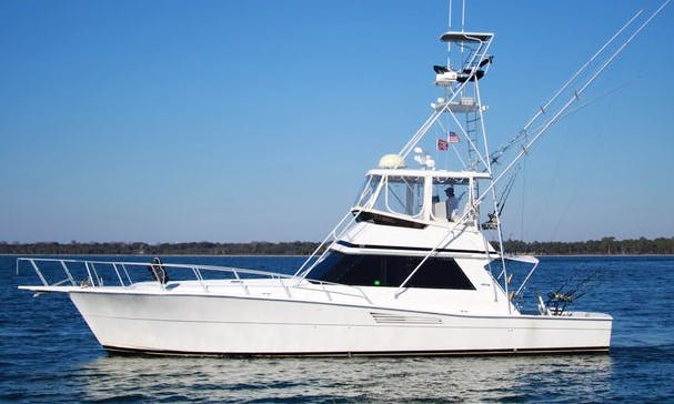 Fishing Charters on Sport Fisherman with Captain Justin in Panama City, United States
