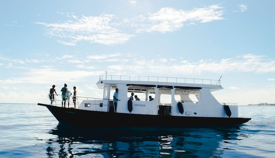 Dive Boat Diversion - Join Our Daily Dive Trips!