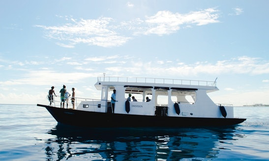 Diversion - Join Our Daily Dive Trips!