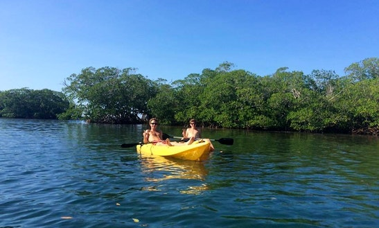 Kayak Rentals And Guided Tours In Islas De La Bahía, Honduras