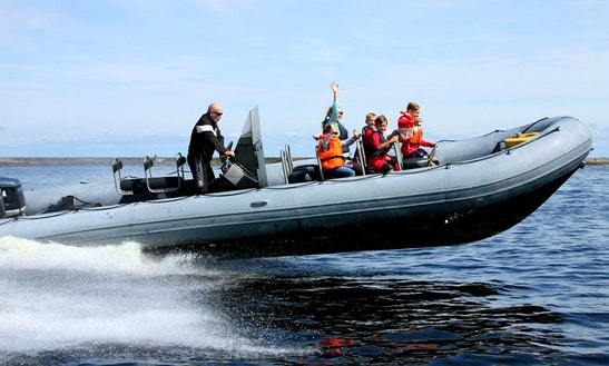 Rent Riga Rigid Inflatable Boat In Riga, Latvia