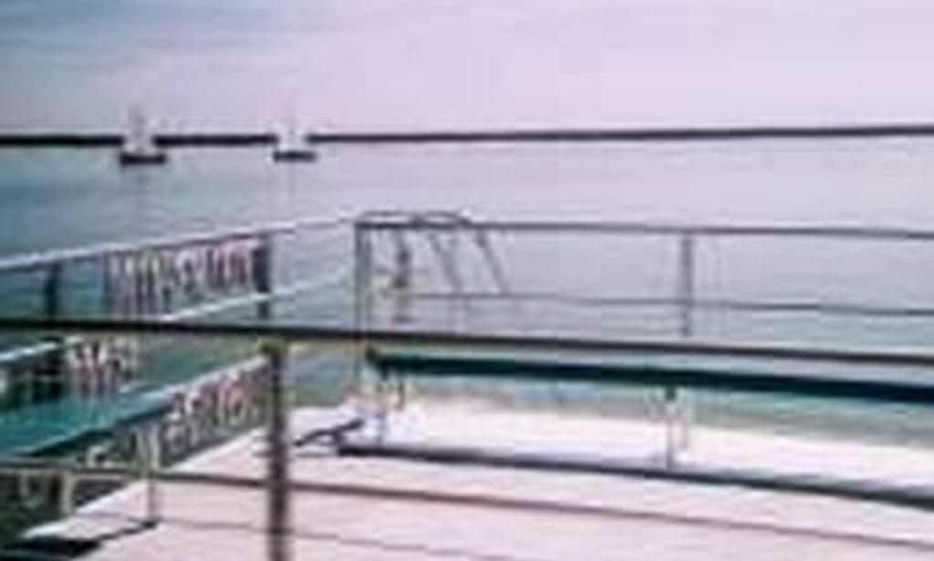 Aransas Pass Ultimate Dolphin Watch Charter On 36ft Kohootz Catamaran