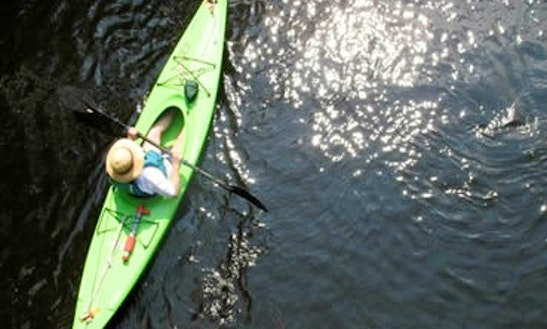 Enjoy Kayaking On Quinnipiac River In North Haven