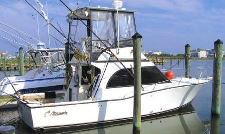 "32ft ""Byte Me"" Sport Fisherman in Wachapreague, Virginia with Captain Andrew"
