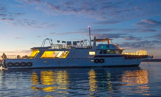 Captained 'marine 2' Passenger Boat Trips In Northbridge, Western Australia