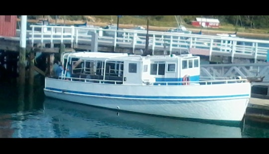 Hauraki Gulf Fishing Charter On 39ft