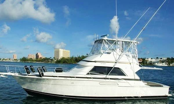 43' Bertram Deep Sea Fishing Nassau First Strike Charters