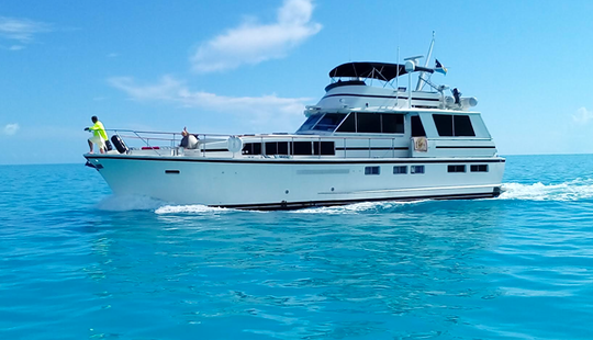 TOP 10 Nassau Boat Rentals for 2019 (with Reviews) | GetMyBoat