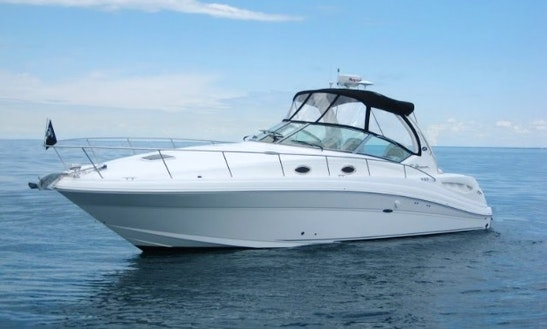 Charter 37' Sea Ray Sports Yacht In Miami Beach, Florida